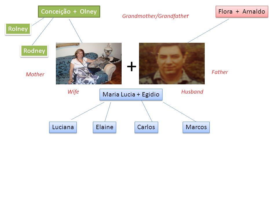 Conceição + Olney Flora + Arnaldo Maria Lucia + Egidio + Rodney Rolney Luciana Elaine Carlos Marcos Grandmother/Grandfathe r Father Mother WifeHusband