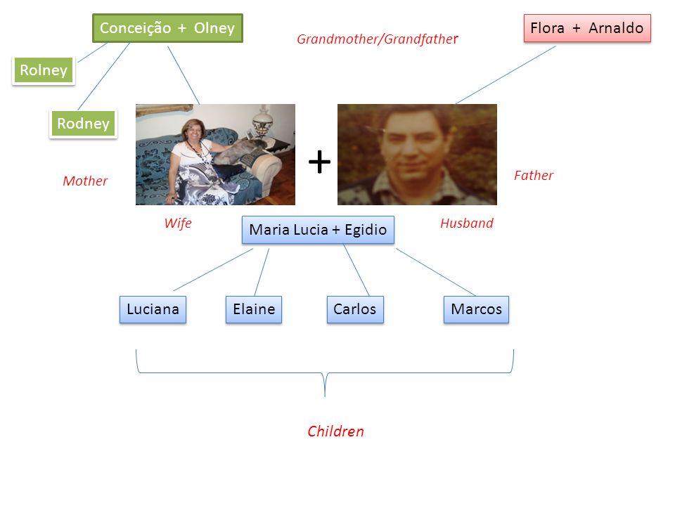 Conceição + Olney Flora + Arnaldo Maria Lucia + Egidio + Rodney Rolney Luciana Elaine Carlos Marcos Grandmother/Grandfathe r Father Mother WifeHusband Children