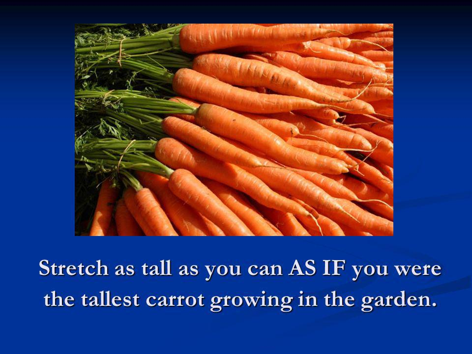 Stretch as tall as you can AS IF you were the tallest carrot growing in the garden.