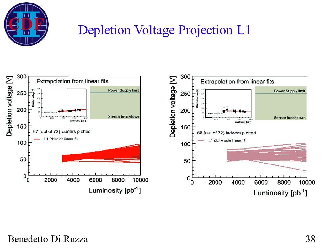 Benedetto Di Ruzza38 Depletion Voltage Projection L1