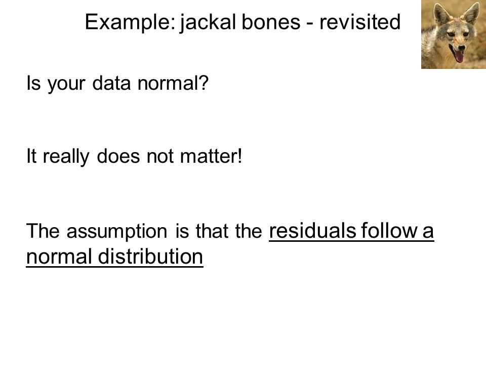 Example: jackal bones - revisited Is your data normal? It really does not matter! The assumption is that the residuals follow a normal distribution
