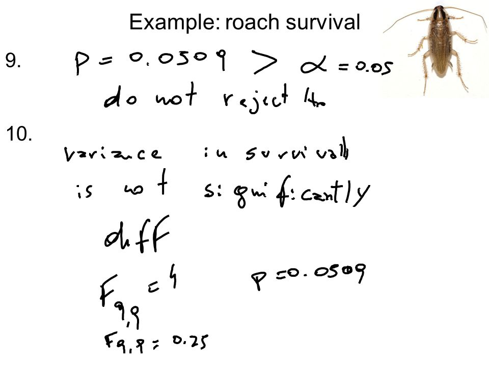 Example: roach survival 9. 10.