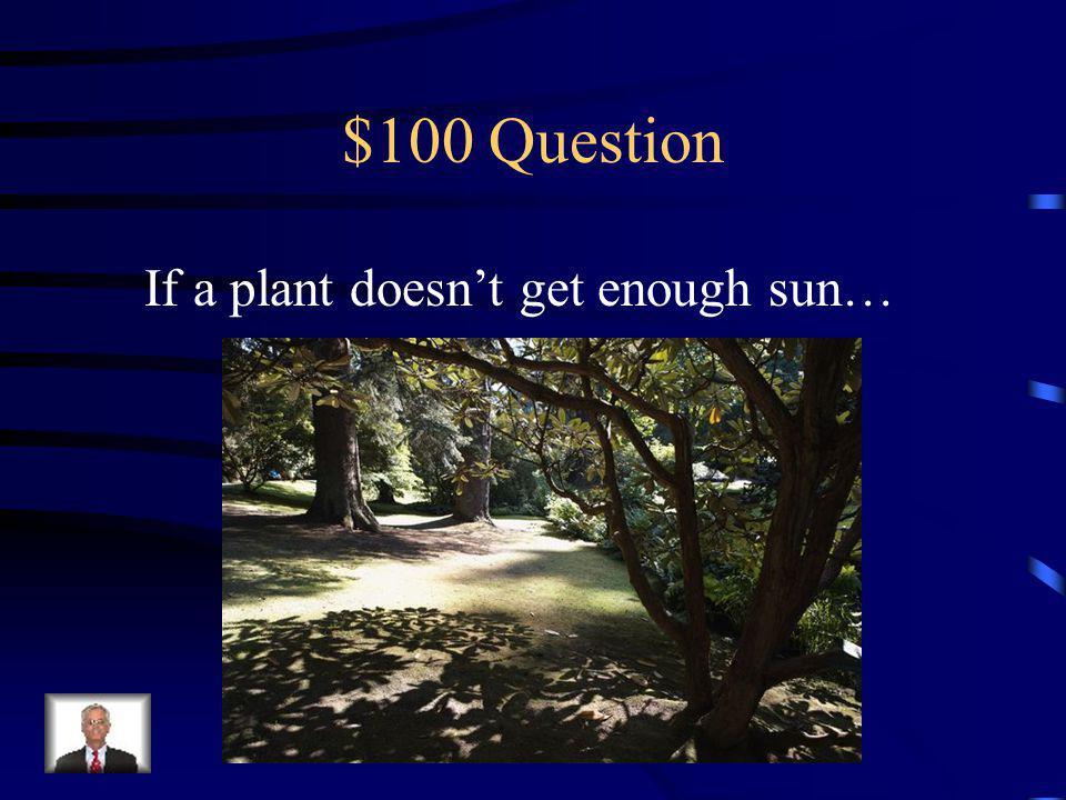 Survival of the Fittest (If/Then) Plants Life Cycle Stage: Egg Physical Traits BehaviorsHumans Play a Part Q $100 Q $200 Q $300 Q $400 Q $500 Q $100 Q