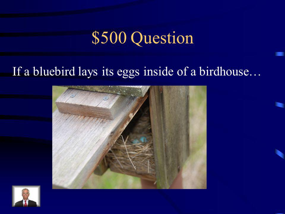 $400 Answer Then the life cycle of those mosquito eggs has been ended.