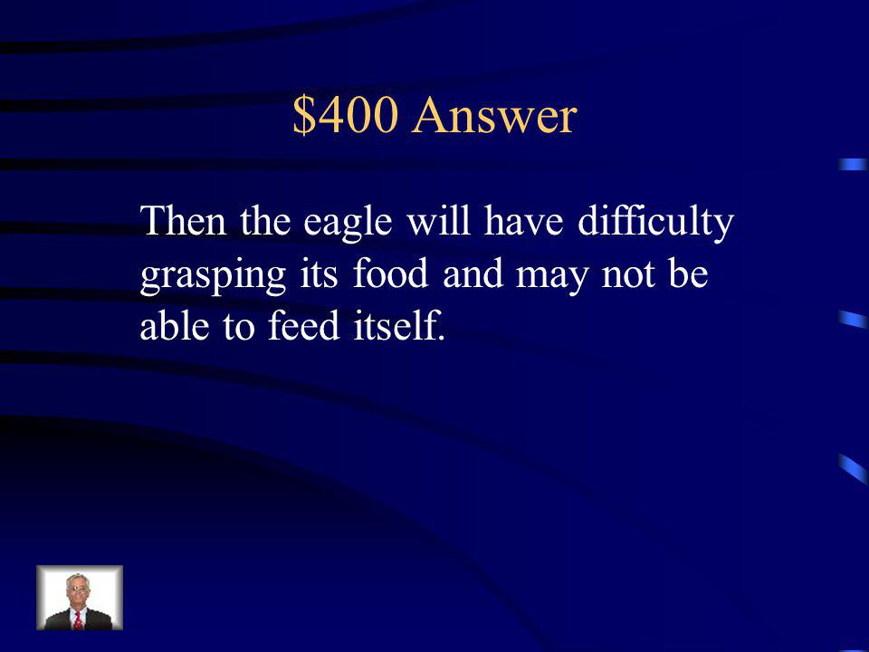 $400 Question If an eagle has several broken talons…