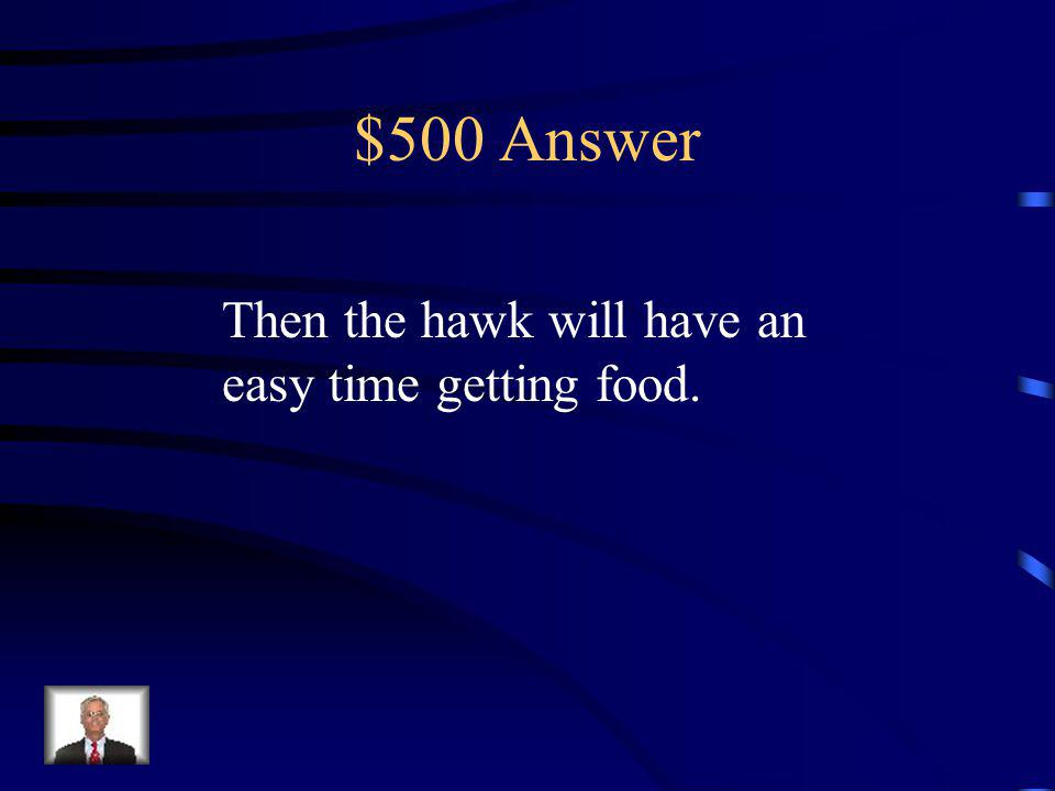 $500 Question If a hawk has very large talons and an enormous beak…