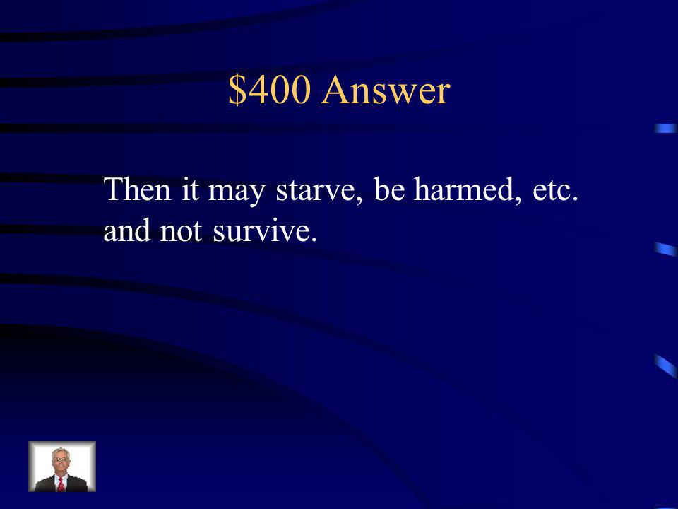 $400 Question If a fawn wanders away from its mother…