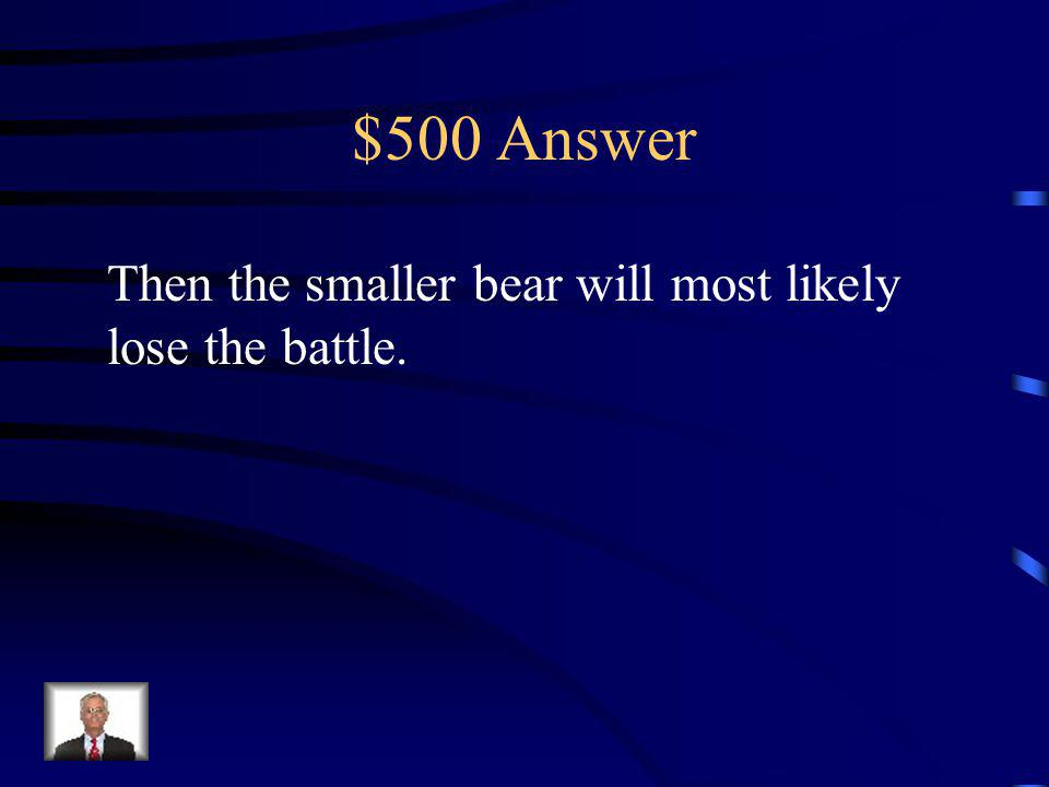 $500 Question If a large bear confronts a smaller bear…