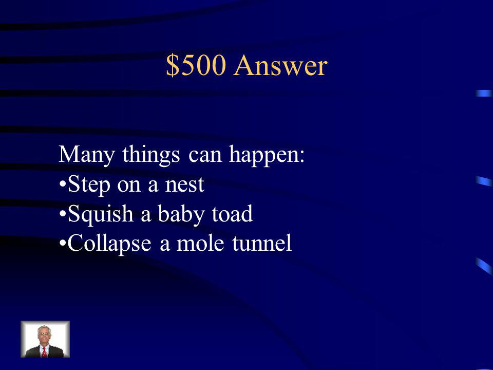 $500 Question If you don't watch where you are Walking….