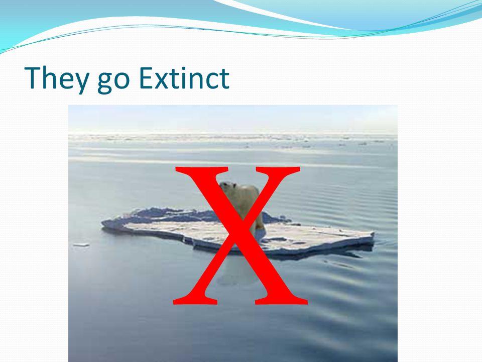 They go Extinct X