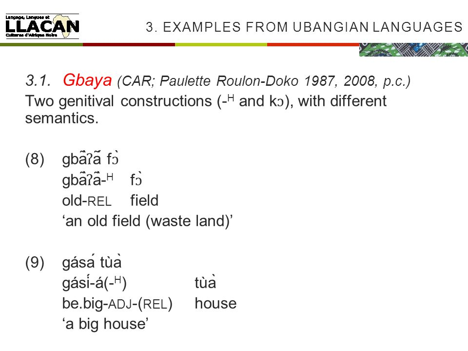 3. EXAMPLES FROM UBANGIAN LANGUAGES 3.1.
