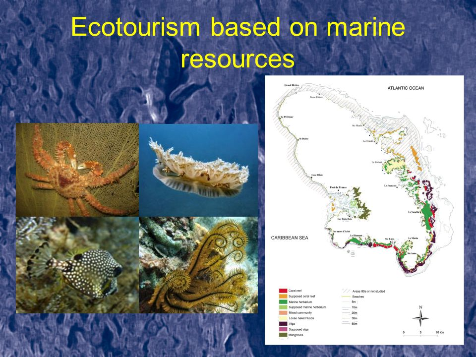 Ecotourism based on marine resources