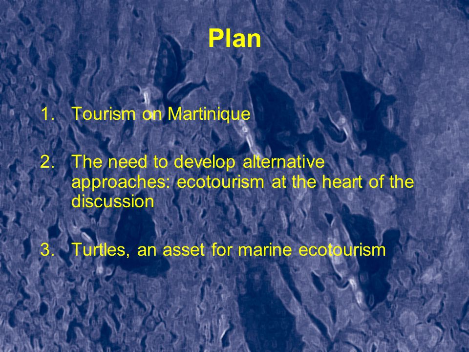 Plan 1.Tourism on Martinique 2.