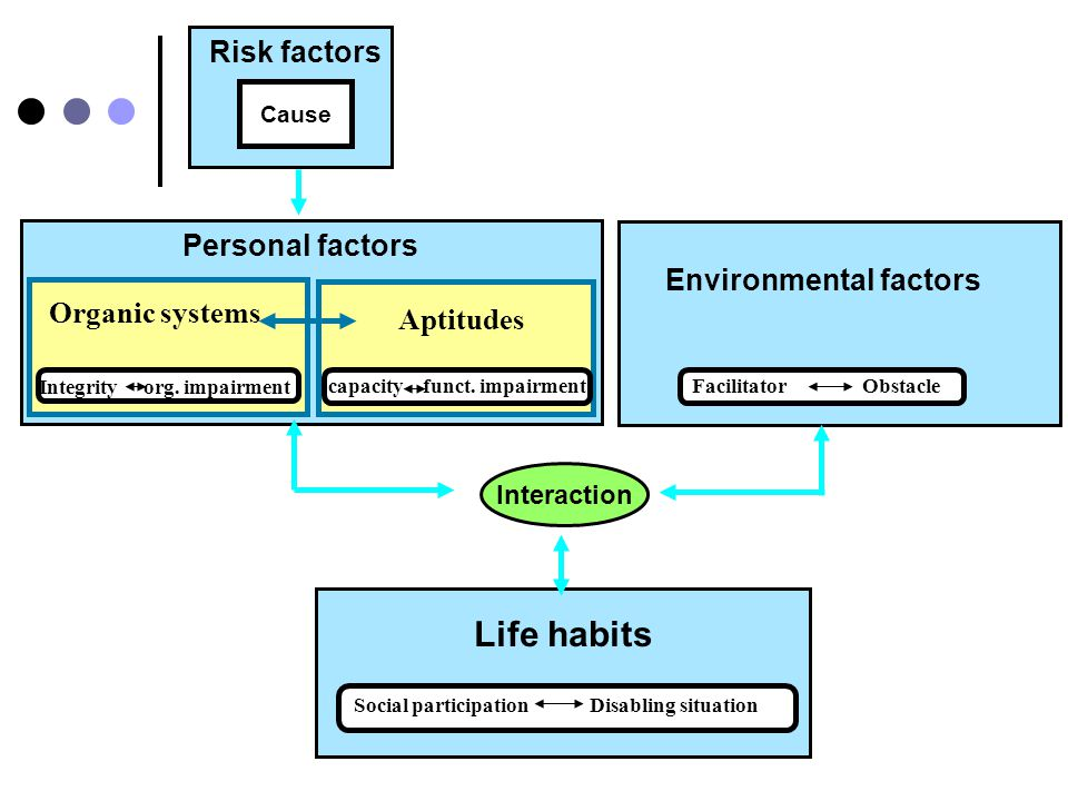 SOCIAL PARTICIPATION According to roles and tasks given to men and women within the community Environmental factors Interaction Personal factors Human development model Intrinsic Including sexe and gender Extrinsic Including gender (RIPPH, 1996)