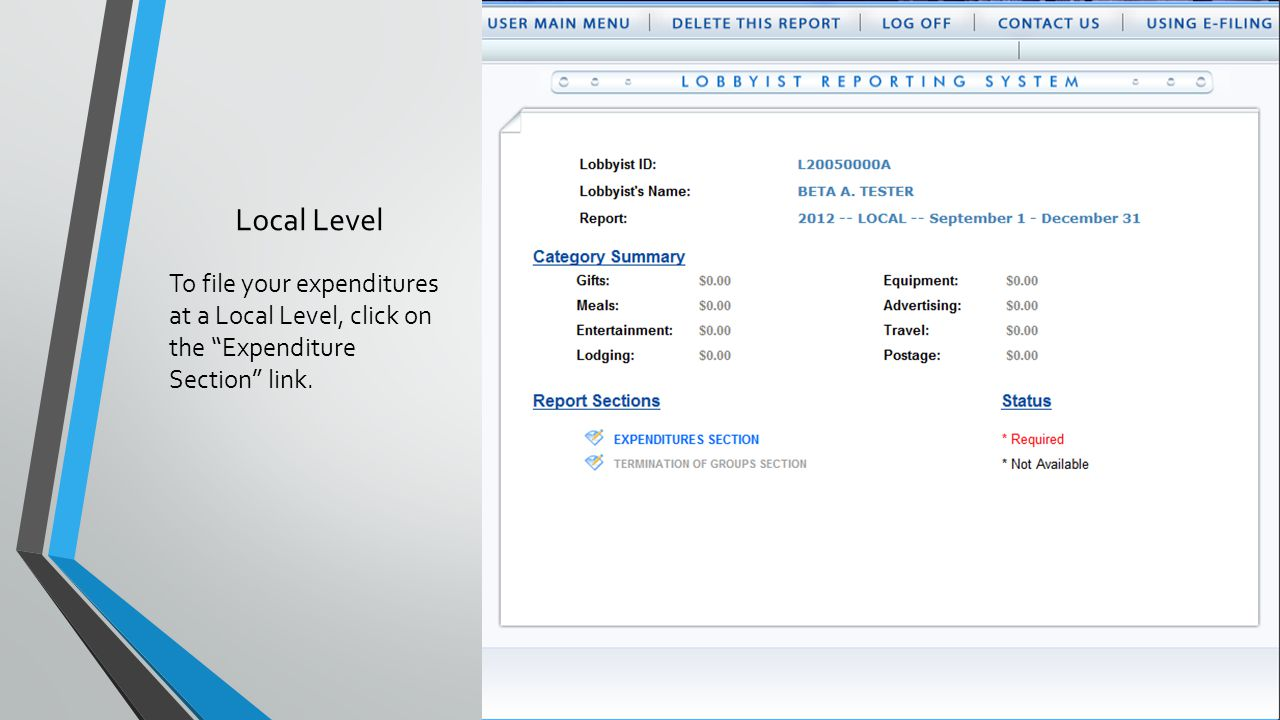 Local Level To file your expenditures at a Local Level, click on the Expenditure Section link.
