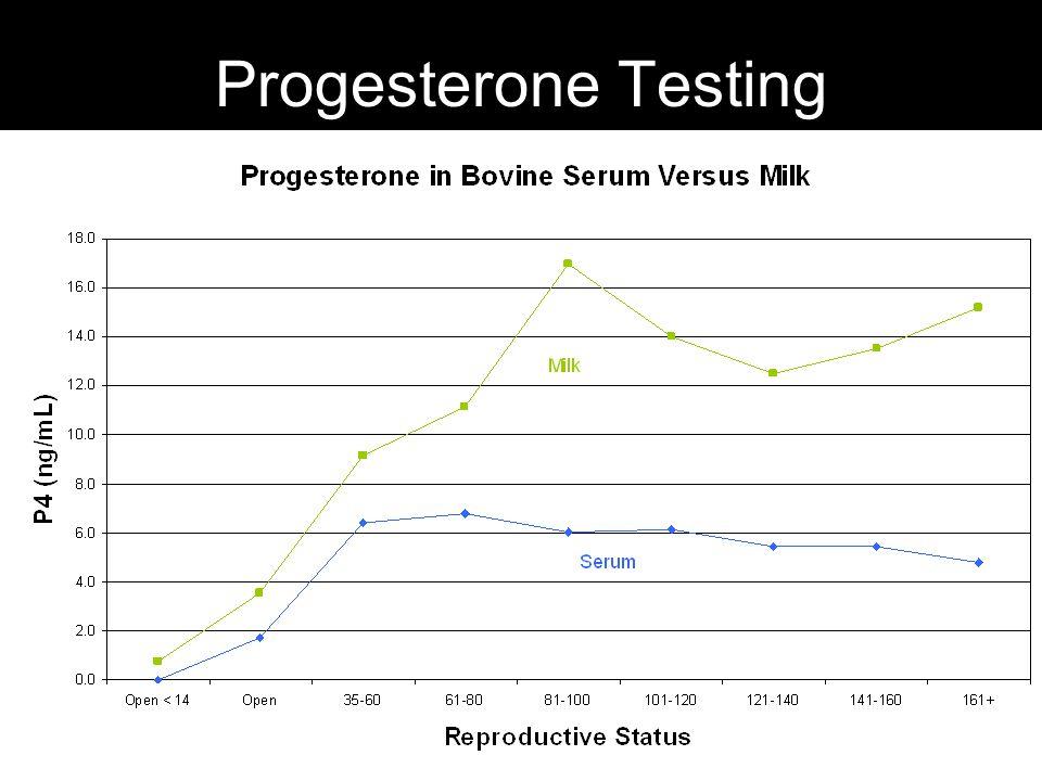 Progesterone Testing