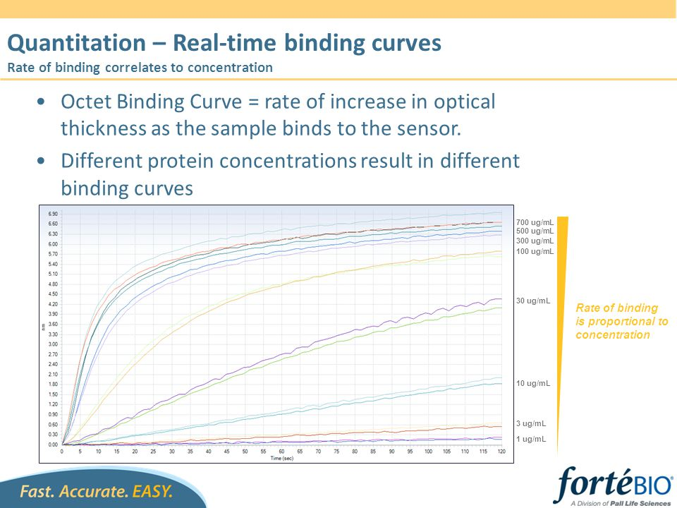Octet Binding Curve = rate of increase in optical thickness as the sample binds to the sensor. Different protein concentrations result in different bi