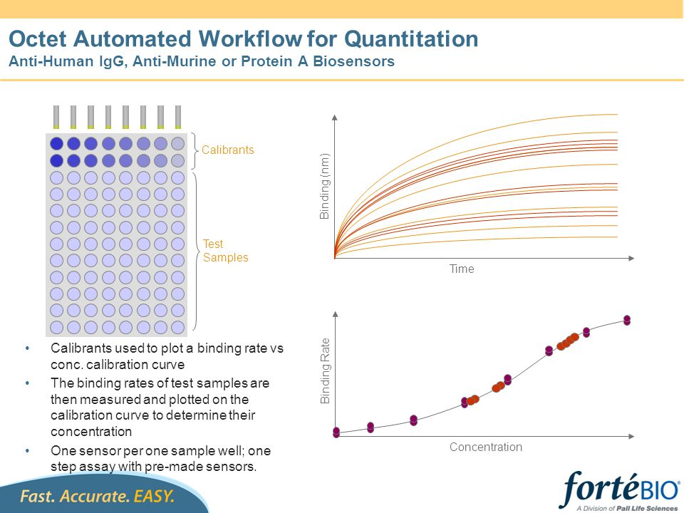Octet Workflow for Quantitation with Regeneration Standards Test Samples Binding (nm) Time (sec) Binding Rate Concentration The binding rates of test samples are measured and interpolated from the standard curve to determine concentration 96 samples analyzed in 15 - 30 minutes Reuse of standard curve is optional Octet Biosensors 120 Buffer/Neut.