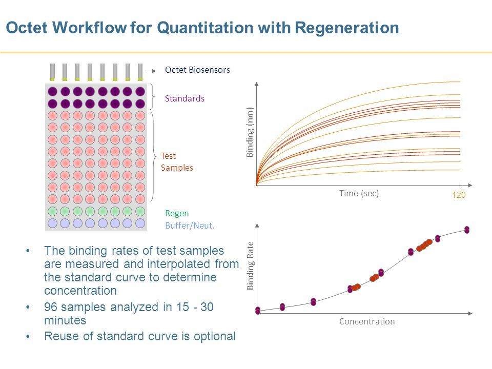 Octet Workflow for Quantitation with Regeneration Standards Test Samples Binding (nm) Time (sec) Binding Rate Concentration The binding rates of test