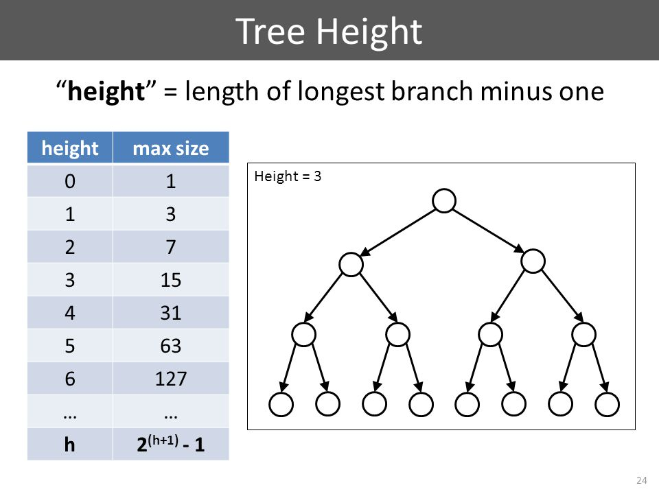 Tree Height 24 height = length of longest branch minus one Height = 3 heightmax size 01 13 27 315 431 563 6127 …… h2 (h+1) - 1