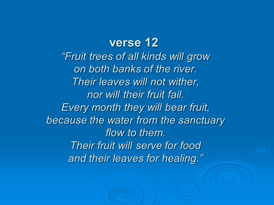 verse 12 Fruit trees of all kinds will grow on both banks of the river.