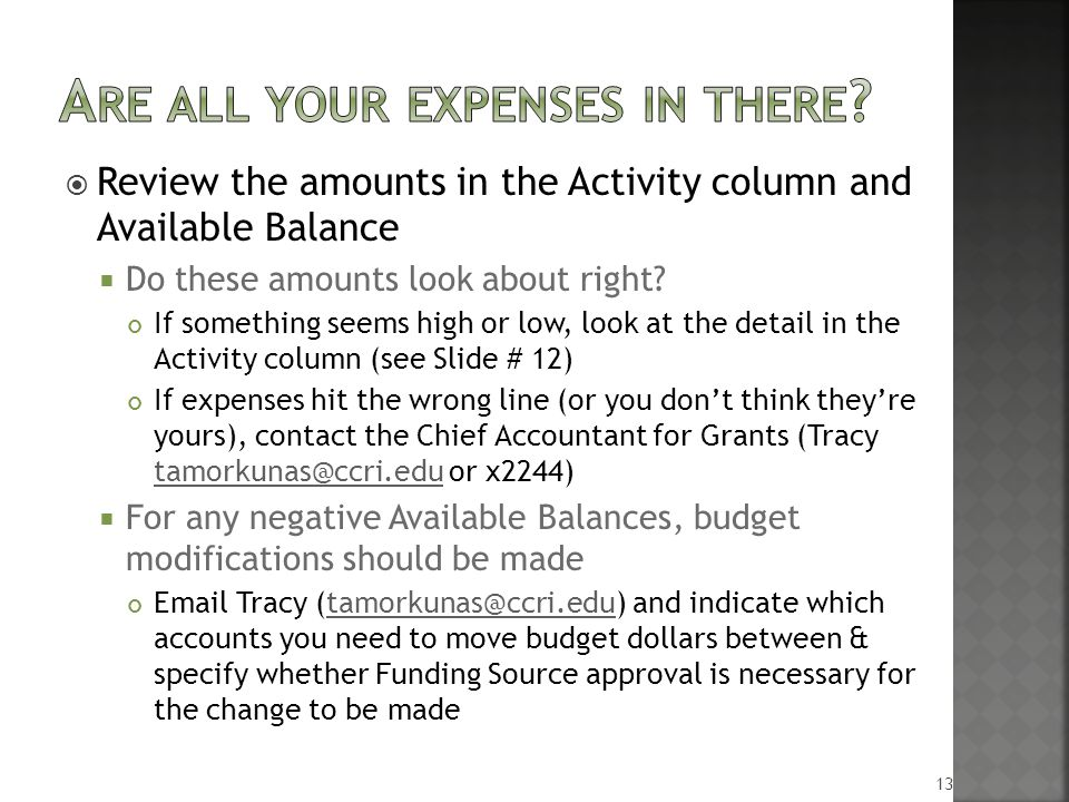  Review the amounts in the Activity column and Available Balance  Do these amounts look about right.