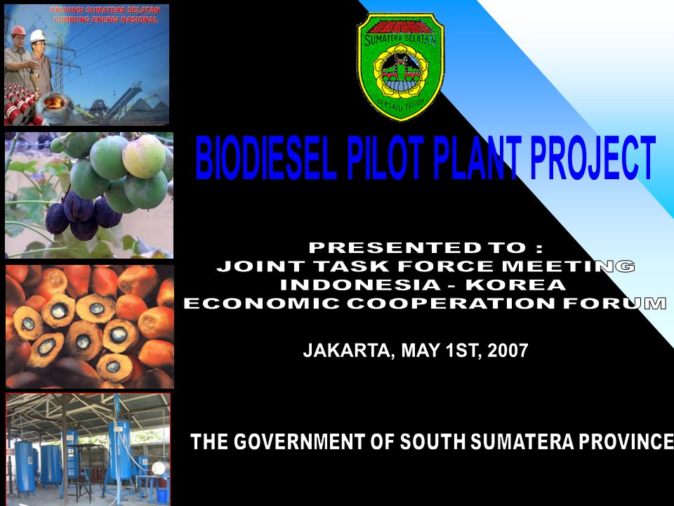 Policy : South Sumatera as National Energy Centre Raw Material : CPO is already exist, Jatropha development on going.