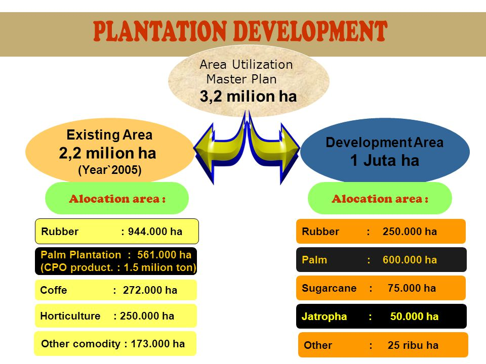 Area Utilization Master Plan 3,2 milion ha Existing Area 2,2 milion ha (Year`2005) Development Area 1 Juta ha Rubber : 944.000 ha Palm Plantation : 561.000 ha (CPO product.