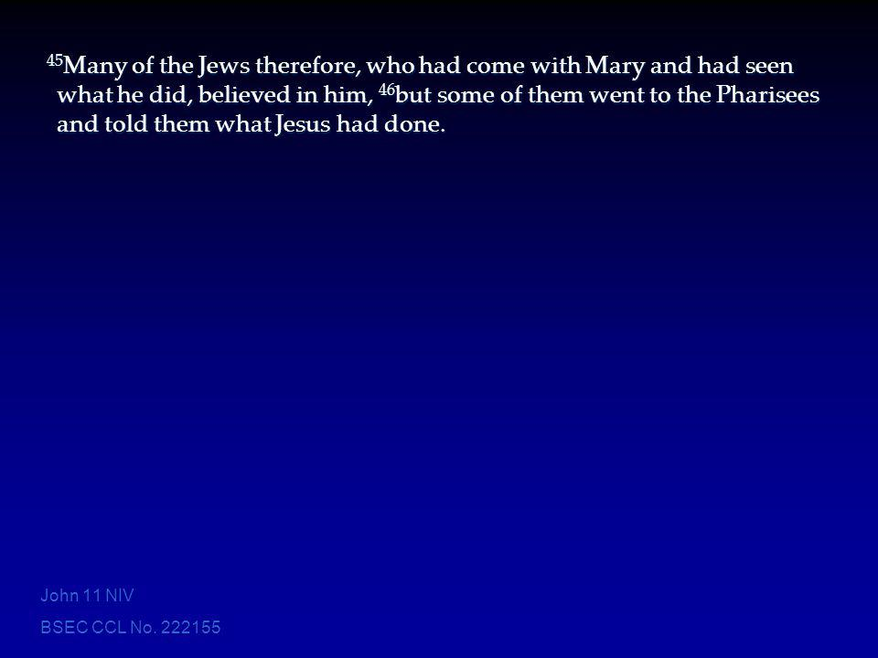 BSEC CCL No. 222155 45 Many of the Jews therefore, who had come with Mary and had seen what he did, believed in him, 46 but some of them went to the P