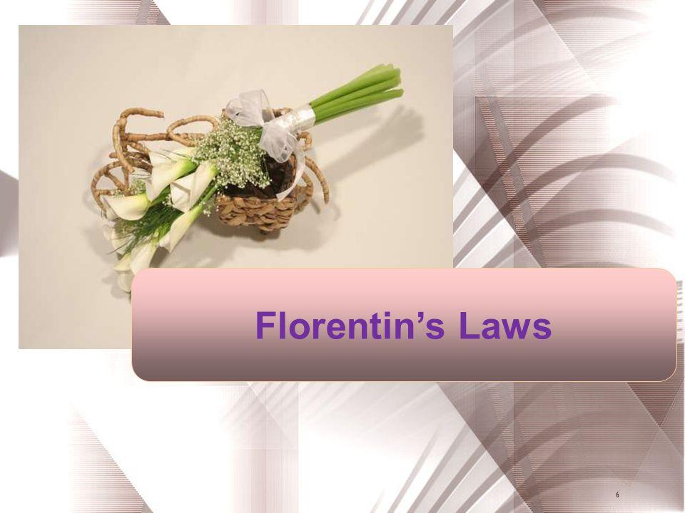 Florentin's Laws 6