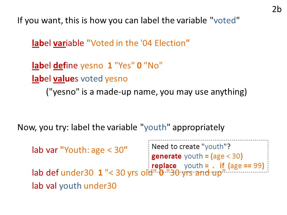 If you want, this is how you can label the variable voted label variable Voted in the 04 Election label define yesno 1 Yes 0 No label values voted yesno ( yesno is a made-up name, you may use anything) Now, you try: label the variable youth appropriately lab var Youth: age < 30 lab def under30 1 < 30 yrs old 0 30 yrs and up lab val youth under30 2b Need to create youth .