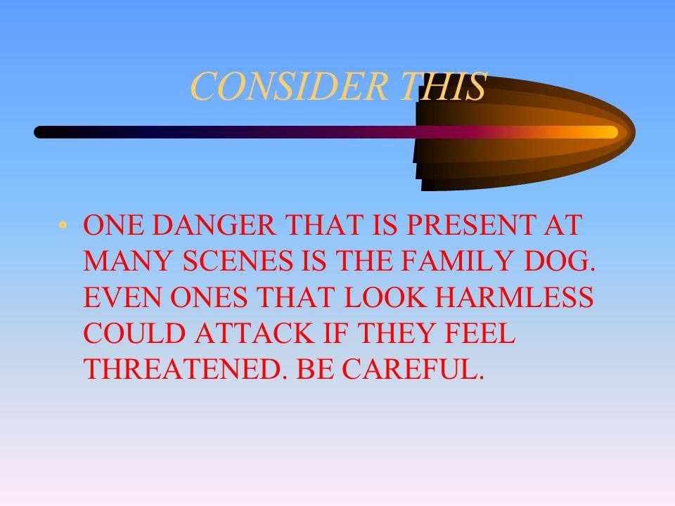 CONSIDER THIS ONE DANGER THAT IS PRESENT AT MANY SCENES IS THE FAMILY DOG.