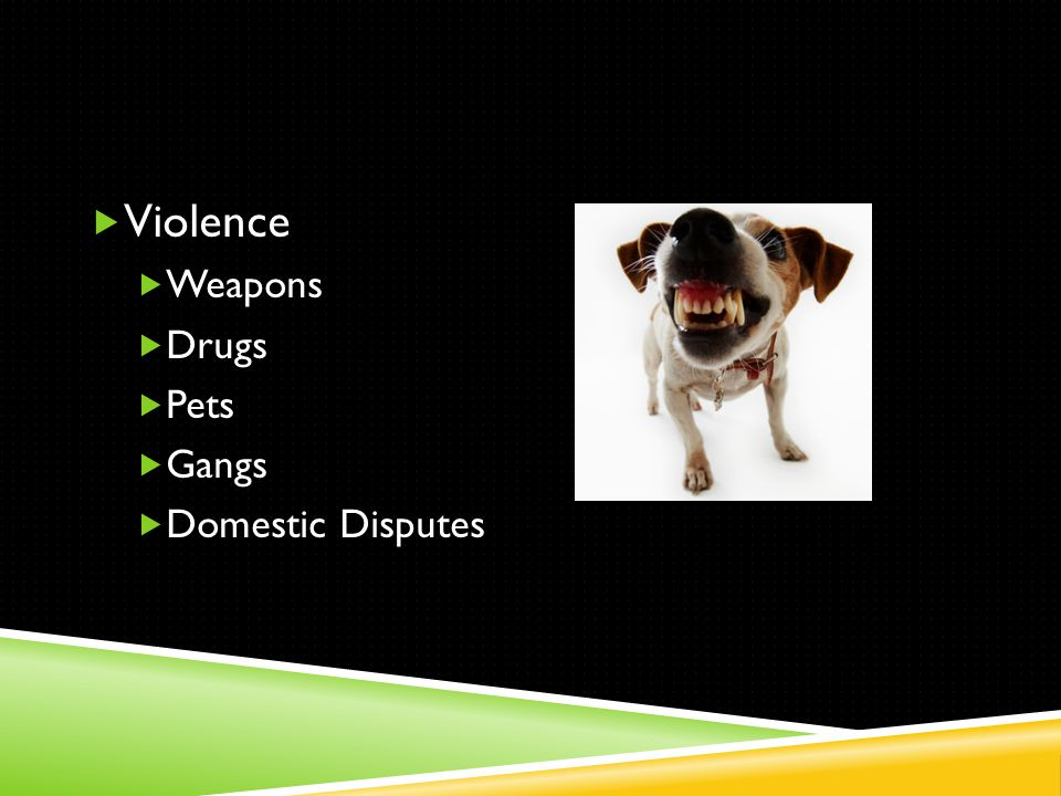  Violence  Weapons  Drugs  Pets  Gangs  Domestic Disputes