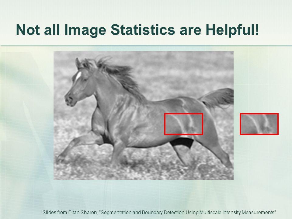 "Not all Image Statistics are Helpful! Slides from Eitan Sharon, ""Segmentation and Boundary Detection Using Multiscale Intensity Measurements""."