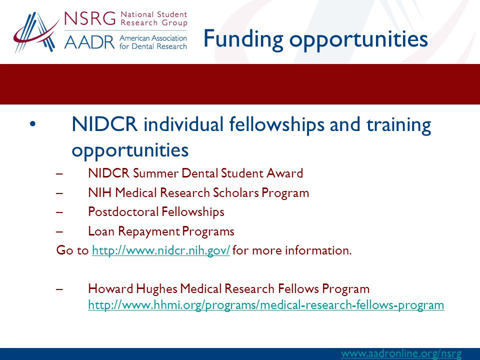 Funding opportunities NIDCR individual fellowships and training opportunities –NIDCR Summer Dental Student Award –NIH Medical Research Scholars Program –Postdoctoral Fellowships –Loan Repayment Programs Go to http://www.nidcr.nih.gov/ for more information.http://www.nidcr.nih.gov/ –Howard Hughes Medical Research Fellows Program http://www.hhmi.org/programs/medical-research-fellows-program http://www.hhmi.org/programs/medical-research-fellows-program www.aadronline.org/nsrg
