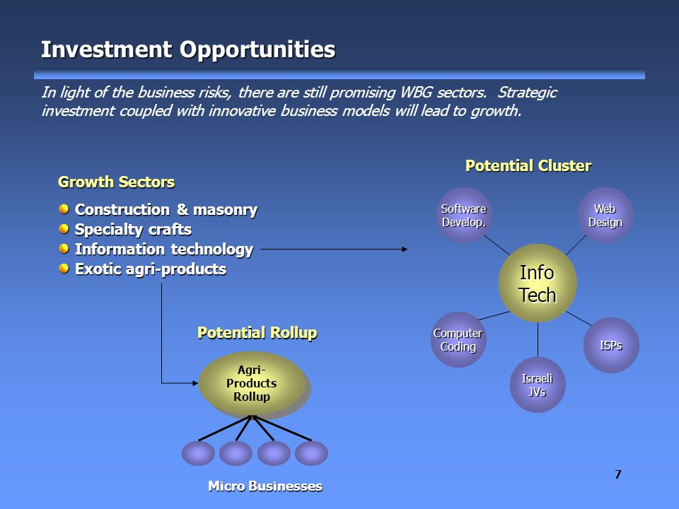 7 Investment Opportunities In light of the business risks, there are still promising WBG sectors.