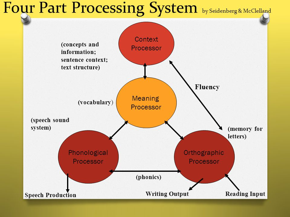 Four Part Processing System by Seidenberg & McClelland Context Processor Meaning Processor Orthographic Processor Phonological Processor Speech Produc