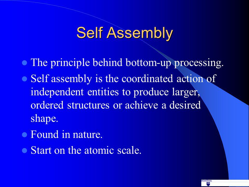 Self Assembly The principle behind bottom-up processing.