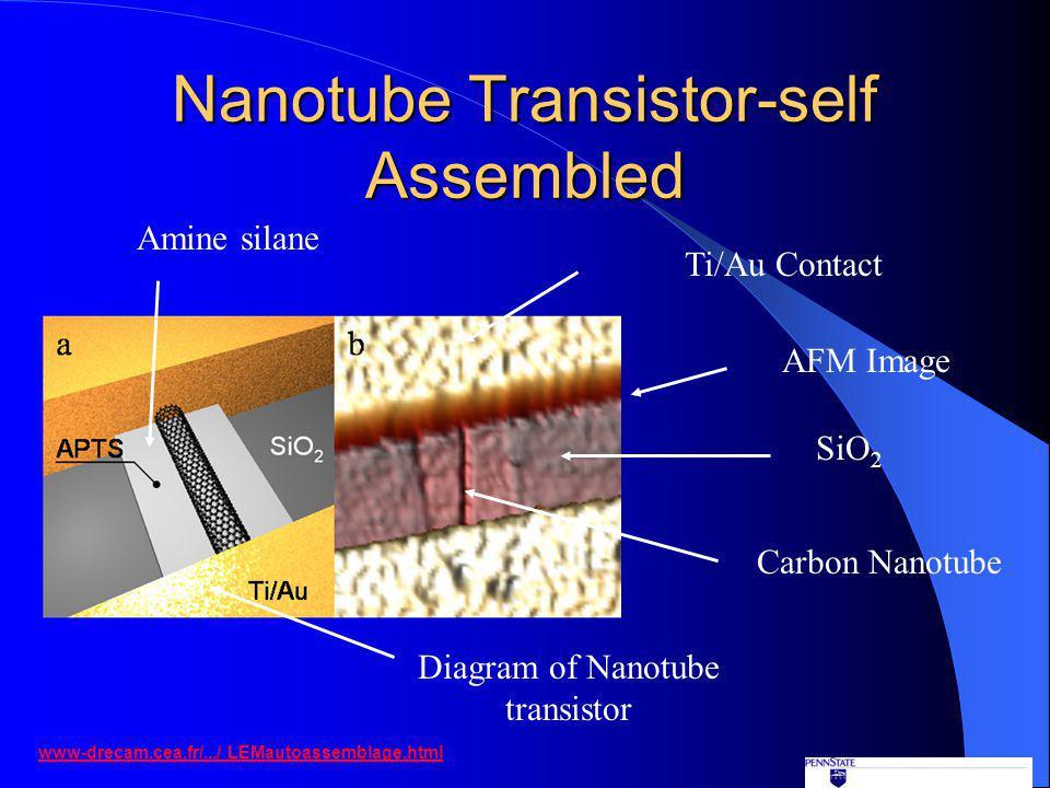 Nanotube Transistor-self Assembled www-drecam.cea.fr/.../ LEMautoassemblage.html Diagram of Nanotube transistor Carbon Nanotube SiO 2 Ti/Au Contact AFM Image Amine silane