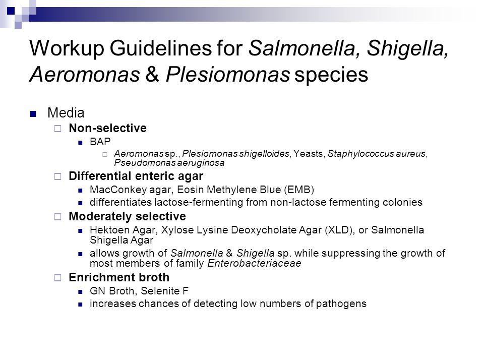 Workup Guidelines for Salmonella, Shigella, Aeromonas & Plesiomonas species Media  Non-selective BAP  Aeromonas sp., Plesiomonas shigelloides, Yeast