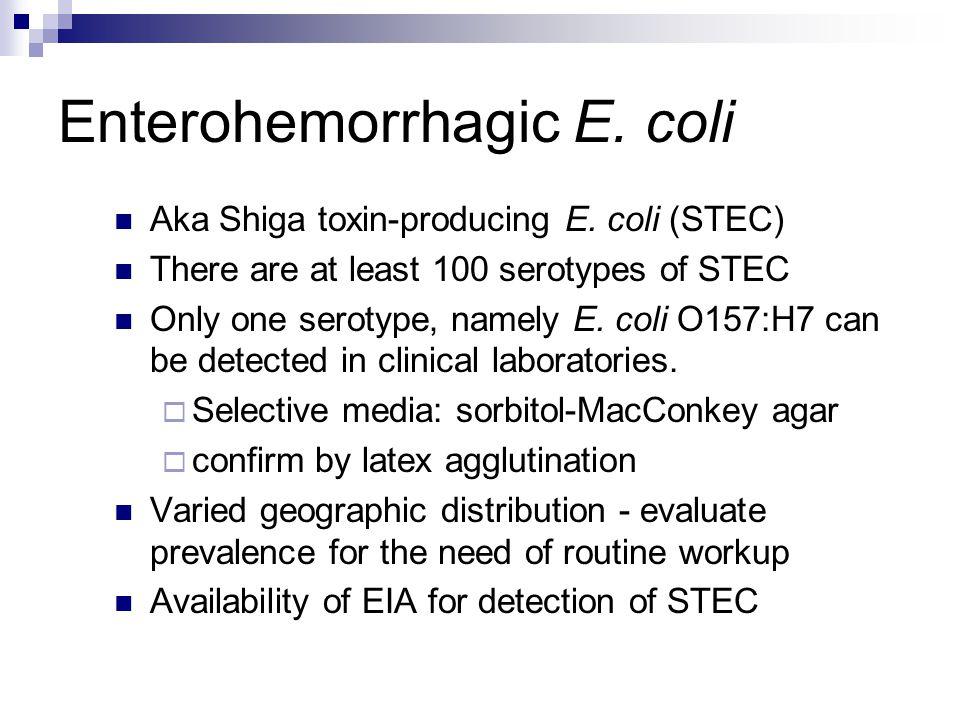Enterohemorrhagic E. coli Aka Shiga toxin-producing E. coli (STEC) There are at least 100 serotypes of STEC Only one serotype, namely E. coli O157:H7