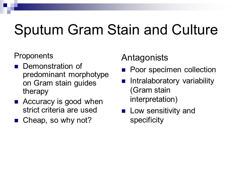 Sputum Gram Stain and Culture Proponents Demonstration of predominant morphotype on Gram stain guides therapy Accuracy is good when strict criteria ar