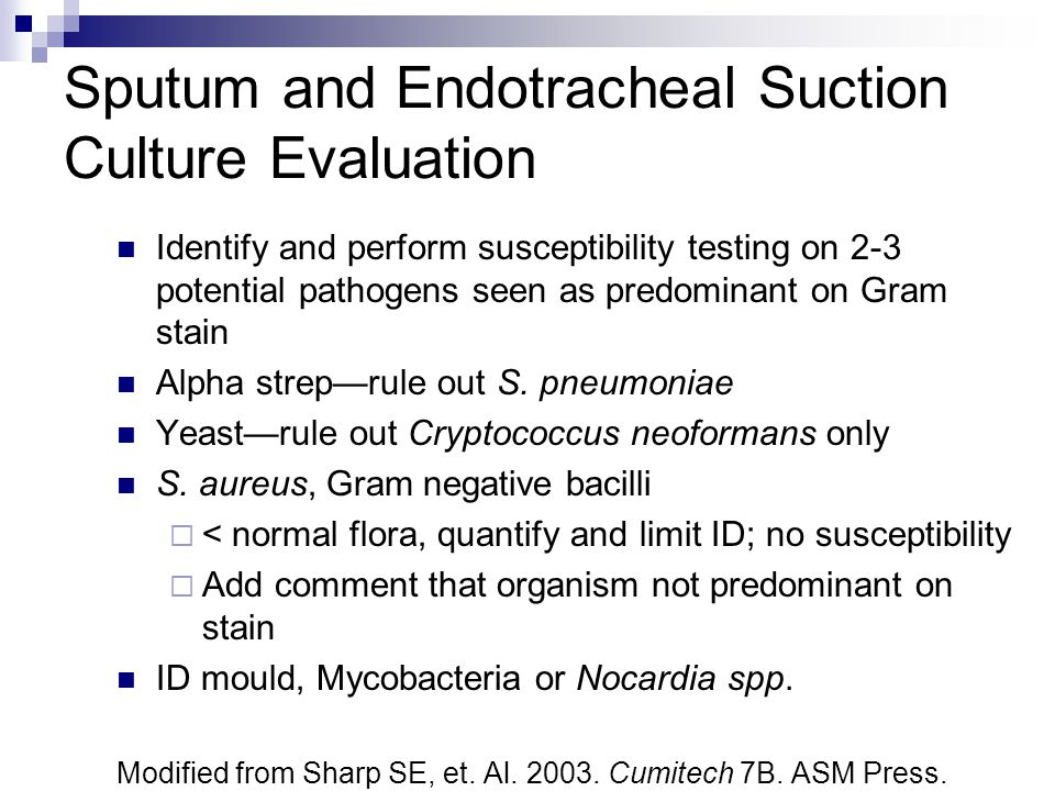 Sputum and Endotracheal Suction Culture Evaluation Identify and perform susceptibility testing on 2-3 potential pathogens seen as predominant on Gram