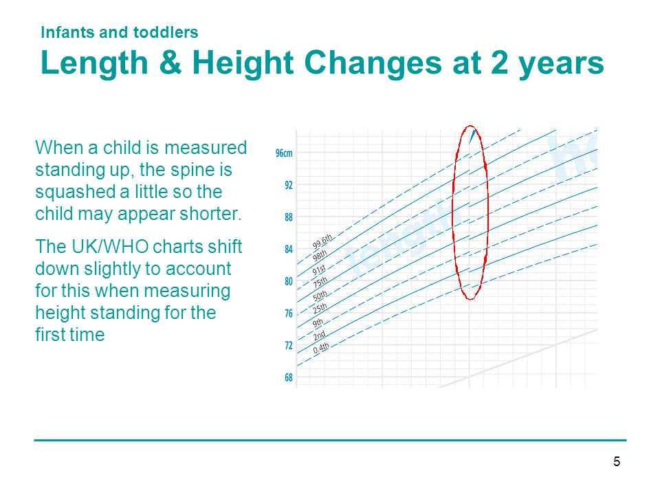 Infants and toddlers 5 Length & Height Changes at 2 years When a child is measured standing up, the spine is squashed a little so the child may appear shorter.