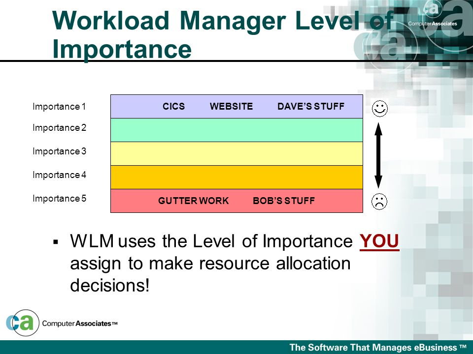  WLM uses the Level of Importance YOU assign to make resource allocation decisions.