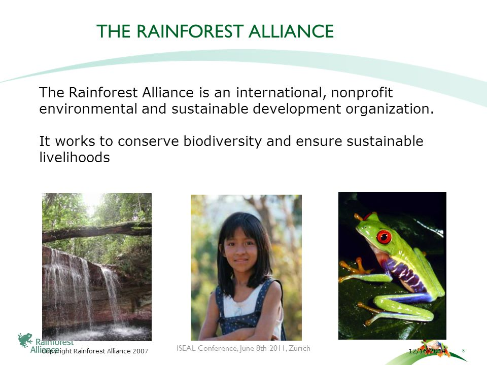 12/16/2014Copyright Rainforest Alliance 2007 THE RAINFOREST ALLIANCE The Rainforest Alliance is an international, nonprofit environmental and sustainable development organization.