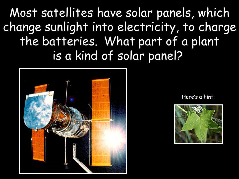 Most satellites have solar panels, which change sunlight into electricity, to charge the batteries.