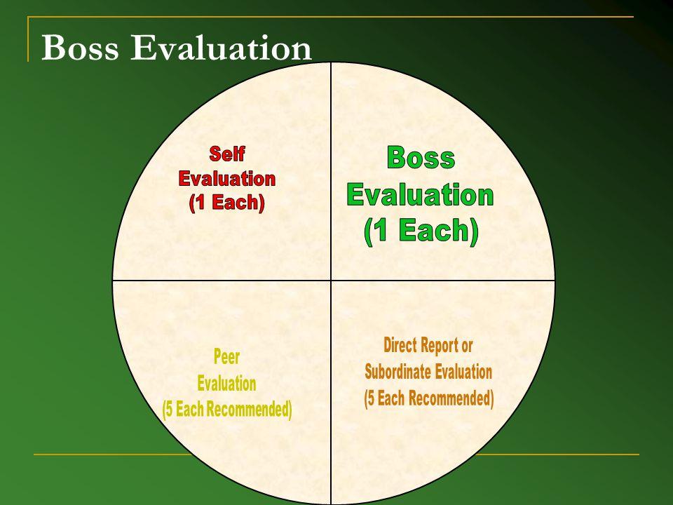 Boss Evaluation