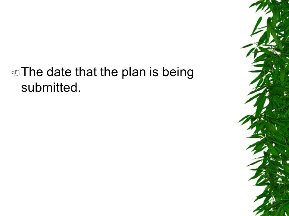  The date that the plan is being submitted.