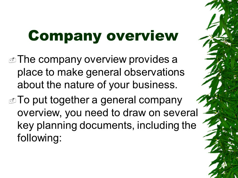 Company overview  The company overview provides a place to make general observations about the nature of your business.  To put together a general c